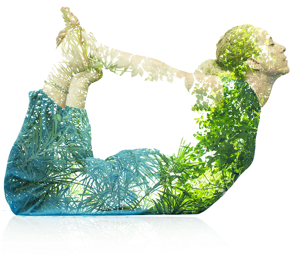 yoga pranayama and meditation